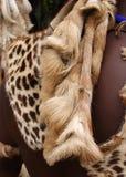 Na Zulu wojowniku zwierzęcy pelt Południowa Afryka Obrazy Stock