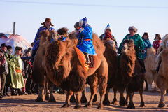 Naadam camel racers Stock Photos