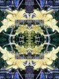 Naadloos abstract patroon van multicolored bloemenelementen stock illustratie