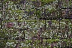 Naadloos baksteenpatroon Royalty-vrije Stock Fotografie