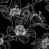 Naadloos behang met orchideebloemen stock illustratie
