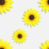 Naadloos behang met zonnebloemen Stock Afbeeldingen