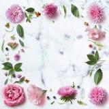Naadloos behangpatroon van roze bloemen Royalty-vrije Stock Fotografie