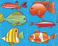 Naadloos blauw patroon met kleurenvissen stock illustratie