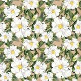 Naadloos bloemenbehang met witte bloemenmagnolia, pioenen watercolour stock illustratie
