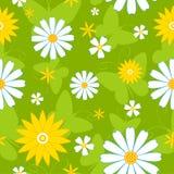 Naadloos bloemenpatroon. Stock Afbeelding