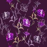 Naadloos BloemenPatroon Stock Foto's