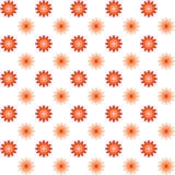 Naadloos bloemenpatroon De zomer vectorachtergrond Froral Geome Stock Foto