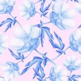 Naadloos bloemenpatroon met anemonenbloemen Stock Foto
