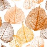 Naadloos bloemenpatroon met de herfstbladeren Royalty-vrije Illustratie