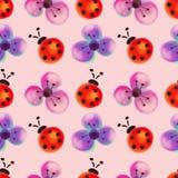 Naadloos bloemenpatroon met insecten Waterverfachtergrond met hand getrokken bloemen en lieveheersbeestjes Stock Afbeelding
