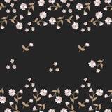 Naadloos bloemenpatroon met tedere minidiebloemen en knoppen op zwarte achtergrond worden geïsoleerd vector illustratie