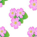 Naadloos bloemenpatroon met tropische bloemen, Vector vector illustratie