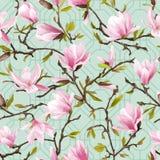 Naadloos BloemenPatroon Van magnoliabloemen en Bladeren Achtergrond vector illustratie