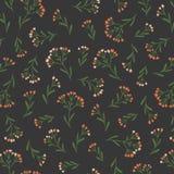 Naadloos Bloemenpatroon in Vectorhand getrokken stijl Ditsy herhaalde achtergrond Herhaald ontwerp voor organische schoonheidsmid royalty-vrije illustratie