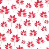 Naadloos Bloemenpatroon in Waterverf stock illustratie