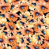Naadloos BloemenPatroon Zonnebloemen watercolor Stock Foto