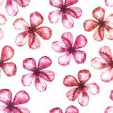 Naadloos bloemenwaterverfornament royalty-vrije illustratie
