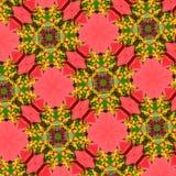 Naadloos bloempatroon Stock Afbeelding
