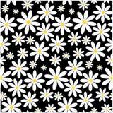 Naadloos bloempatroon royalty-vrije stock afbeelding