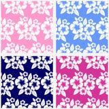 Naadloos bloempatroon in blauw en roze. Stock Afbeeldingen