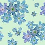 Naadloos botanisch patroon van blauwe bloemen op een groene achtergrond royalty-vrije illustratie