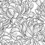 Naadloos bw patroon met chrysant Stock Fotografie