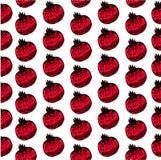 Naadloos decoratief zwart en rood patroon met granaatappels Stock Afbeelding