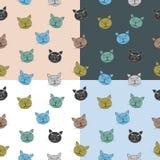 Naadloos die kattenpatroon met snuit uit boom wordt samengesteld Royalty-vrije Stock Foto