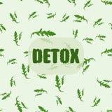 Naadloos die patroon van Arugula-bladeren, met hand getrokken woord wordt gemaakt detox Royalty-vrije Stock Afbeelding