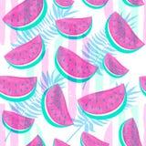 Naadloos die Watermeloenpatroon op hand getrokken borstelbackgro wordt geïsoleerd Stock Afbeeldingen