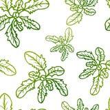 Naadloos exotisch patroon met tropische bladeren op een witte achtergrond Stock Afbeelding