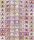 Naadloos gekleurd patroon met vlinders Stock Foto's