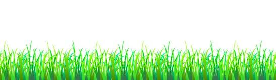 Naadloos gras Royalty-vrije Stock Afbeelding