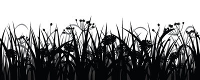 Naadloos gras en bloemensilhouet Royalty-vrije Stock Foto