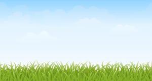 Naadloos gras en Hemel – Stock Afbeeldingen