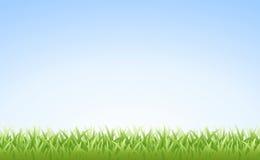 (Naadloos) gras en Hemel stock illustratie
