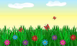 Naadloos gras met bloemen Stock Foto's