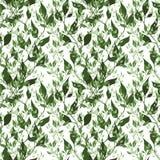 Naadloos groen patroon Royalty-vrije Illustratie