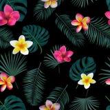 Naadloos hand getrokken tropisch vectorpatroon met orchideebloemen Stock Foto's