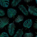 Naadloos hand getrokken vectorpatroon met groene palmbladen op DA Royalty-vrije Stock Afbeeldingen