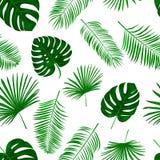 Naadloos hand getrokken vectorpatroon met groene palmbladen op wh Stock Foto's