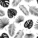 Naadloos hand getrokken vectorpatroon met groene palmbladen op wh Royalty-vrije Stock Foto's