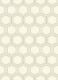 Naadloos hexagon patroon Stock Afbeelding