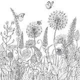 Naadloos lijnpatroon met wildflowers en insecten vector illustratie