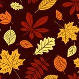 Naadloos met de herfstbladeren Stock Foto
