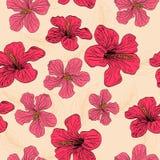 Naadloos met rode bloemen Stock Afbeelding