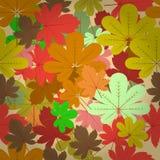 Naadloos natuurlijk de herfstpatroon Stock Afbeeldingen