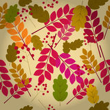 Naadloos natuurlijk de herfstpatroon Stock Afbeelding