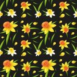 Naadloos ontwerp als achtergrond met gele narcisbloemen Royalty-vrije Stock Afbeeldingen